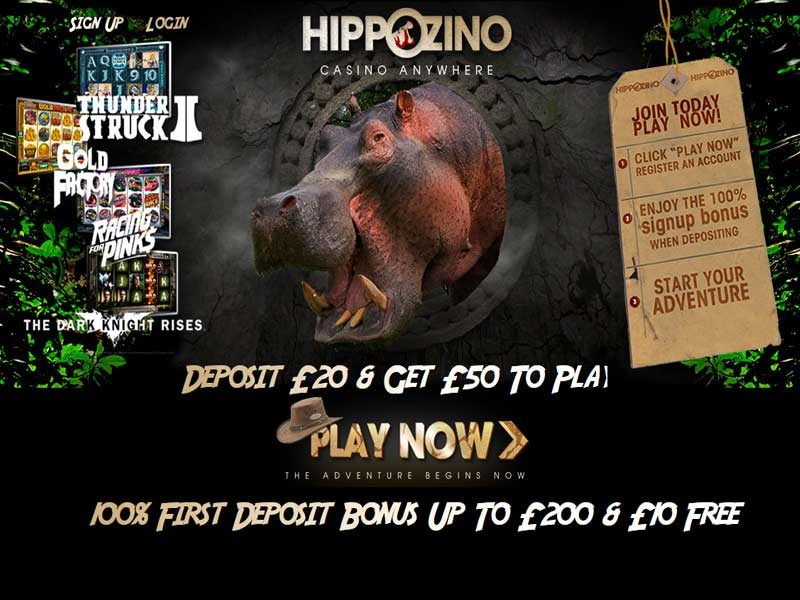 Hippozino Casino Promotions